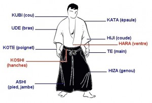 Aikido_membres_corps